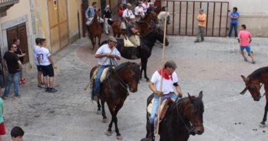 Abren el plazo de inscripción para participar como jinete en el traslado de los bueyes de San Juan