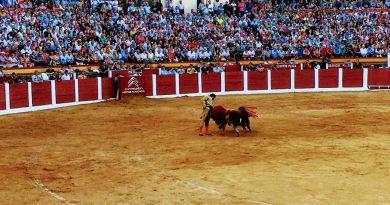 La empresa cauriense Ceber Tauro gestionará otro año la Plaza de Toros de Plasencia